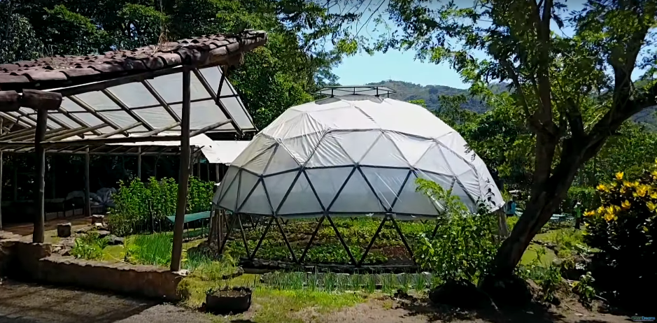 Tour Of An Entire Permaculture Neighborhood in Costa Rica...