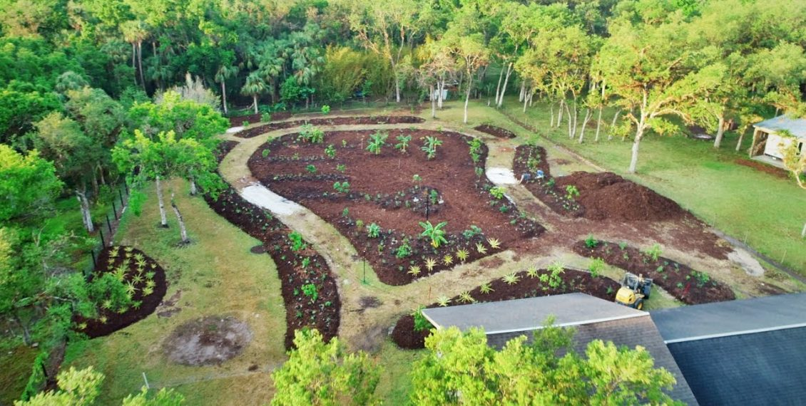 From Lawn Wasteland To EPIC Food Forest In 10 Days...