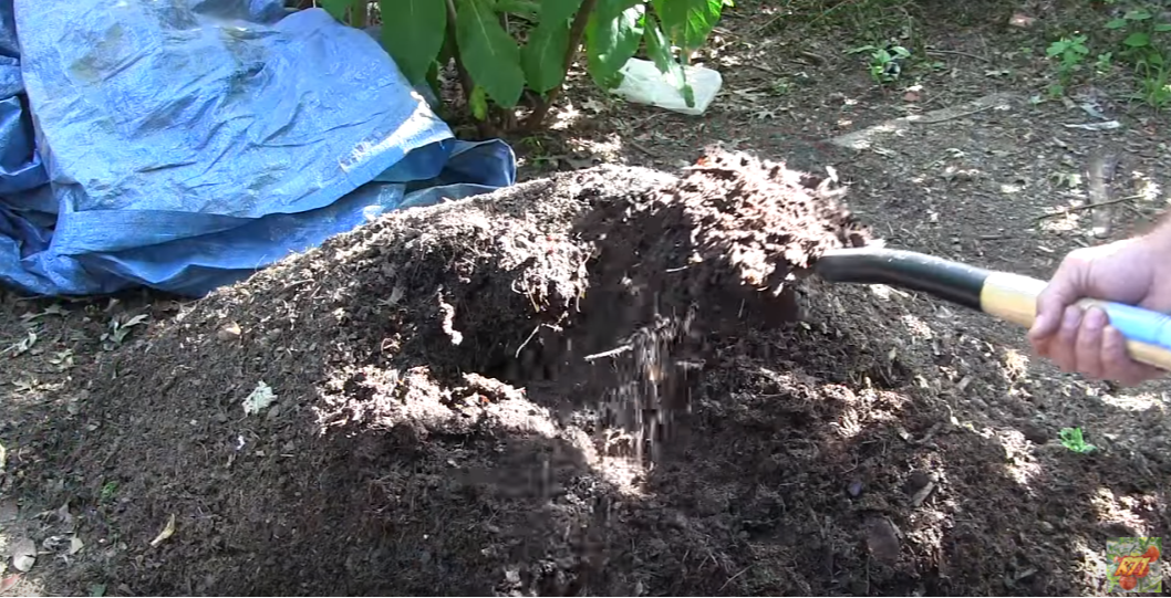 Grass To Garden Soil In 14 Days! Drunken Composting Using Beer, Cola, & Ammonia...