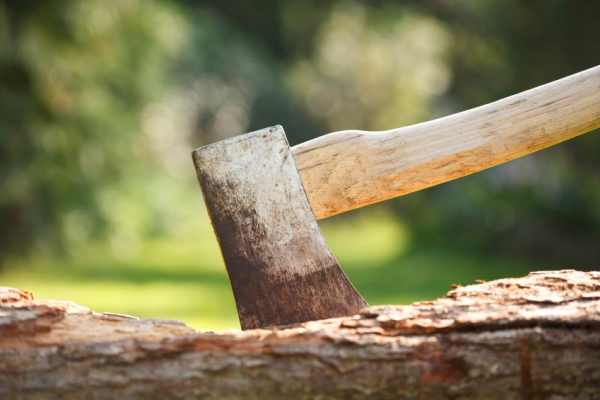 The Top 5 Most Popular Axes & Hatchets For Chopping Wood...