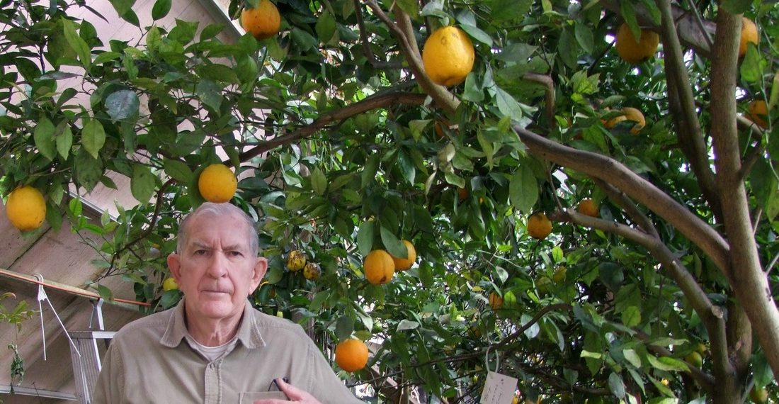 Nebraska Retiree Uses The Earths Heat To Grow Oranges In The Snow...