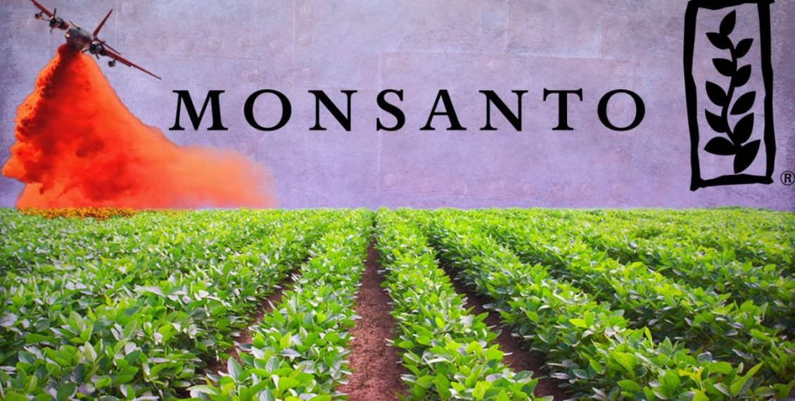 Monsanto: The Company That Owns The World's Food Supply...