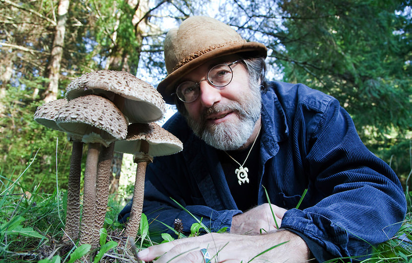 6 Ways Mushrooms Can Save The World - Paul Stamets...