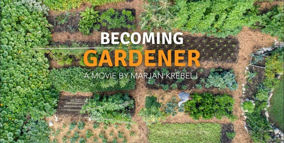 Becoming A Gardener – No Dig Vegetable Garden With A Tiny House...