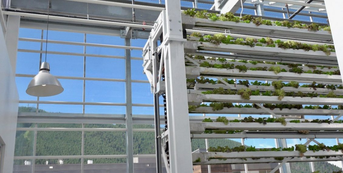 This 1/10th Of An Acre Vertical Farm Grows Produce Equivalent To 10 Acres Of Traditional Farming...