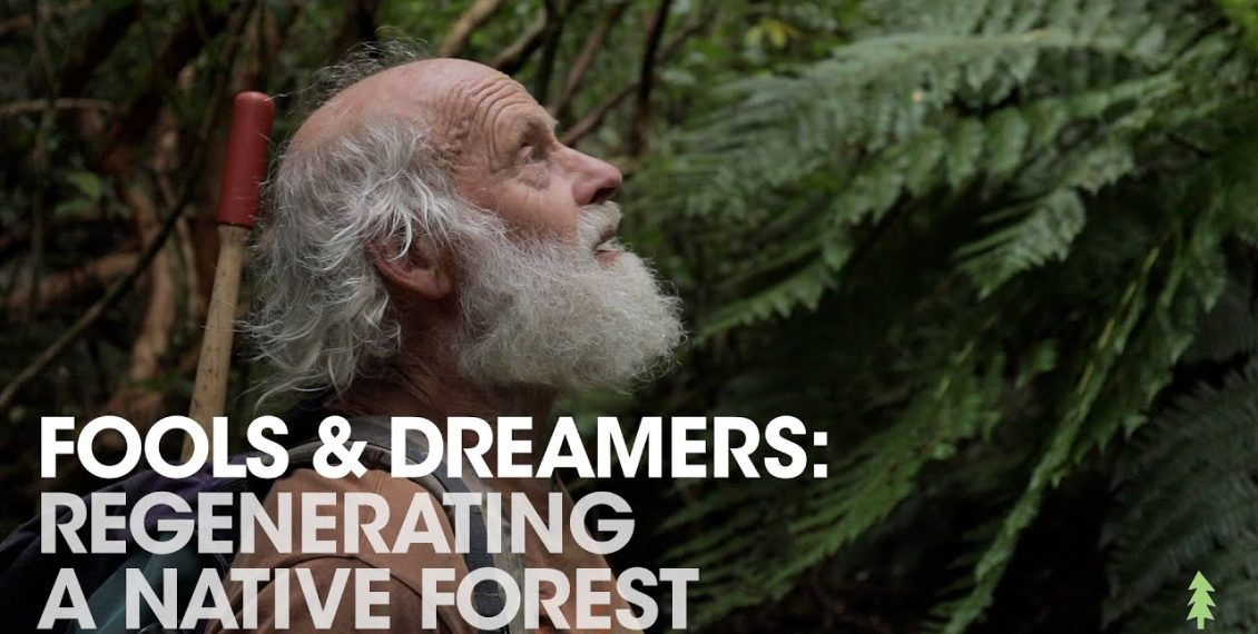 Man Spends 30 Years Regenerating Farmland Into Amazing Forest...