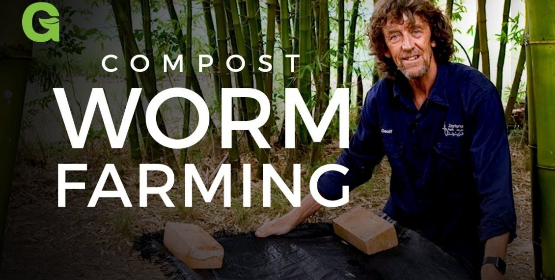 Compost Worm Farming, Making Your Own Compost...