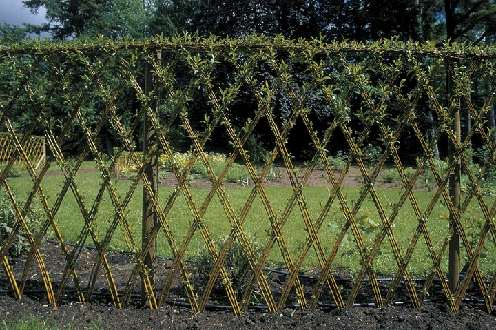 how to make fences eco game