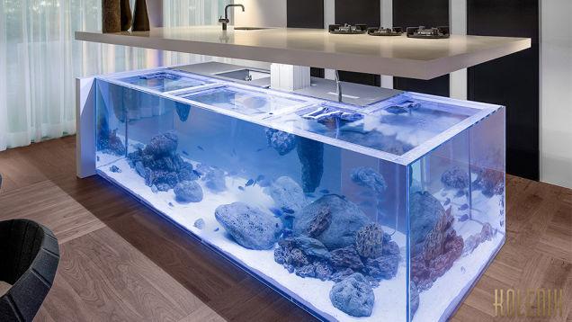 This Amazing Aquarium Brings The Ocean Into The Kitchen...
