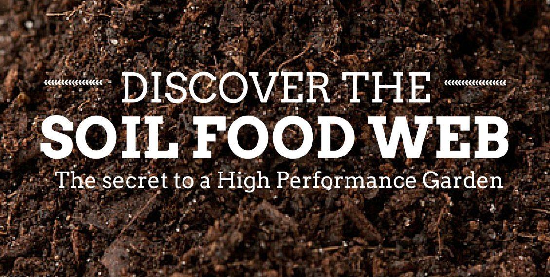 Building A Super Soil Food Web For The Best Garden...