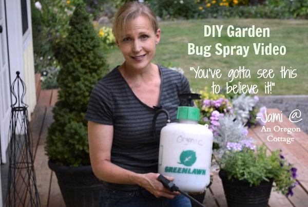 Homemade Garlic-Mint Garden Insect Spray That Really Works...
