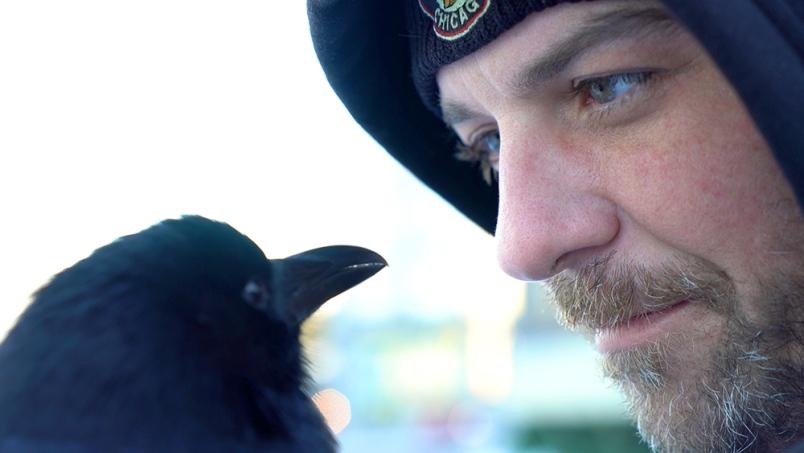 'Canuck & I' Explores The Unique Bond Between A Crow & His Human Friend...