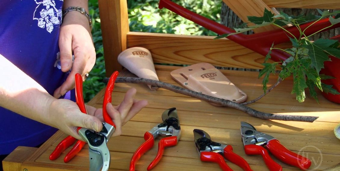 Best Selling Hand Pruning Shears - Reviews...
