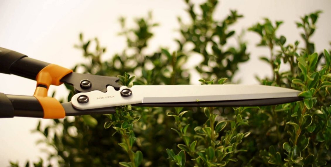 Best Selling Hedge Pruning Shears & Loppers - Reviews...