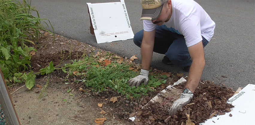Landscape Fabric Pros & Cons – Finding An Alternative Through Sheet Mulching For Weed Control...