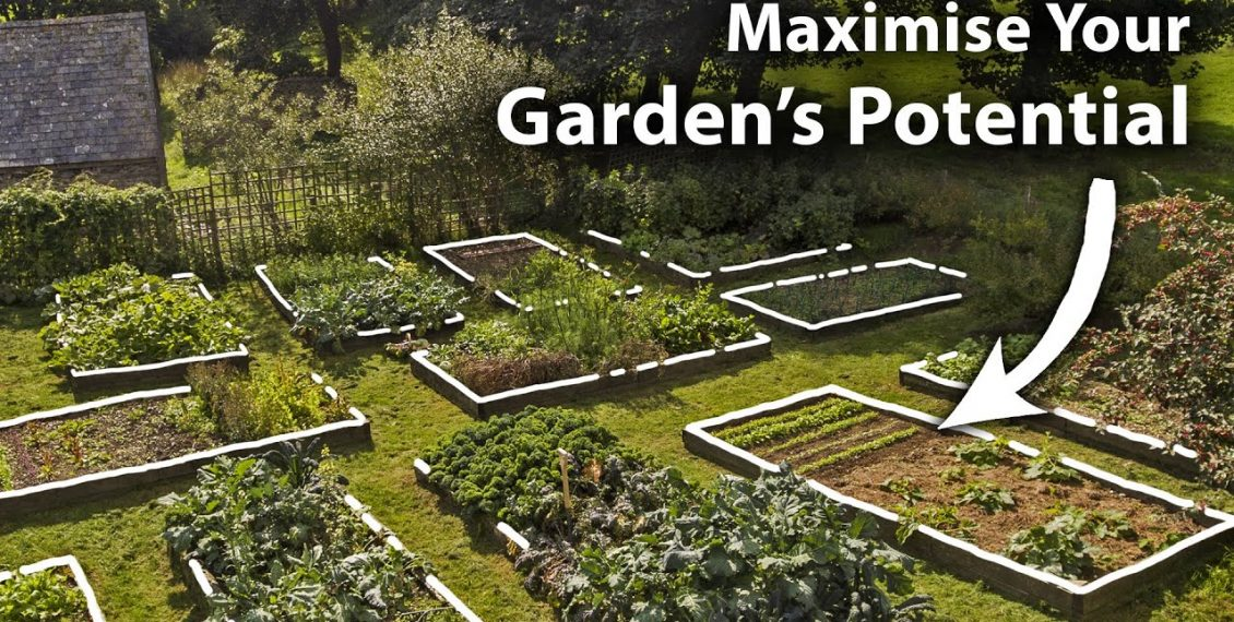 How To Create A Planting Plan For Year-Round Food Abundance...