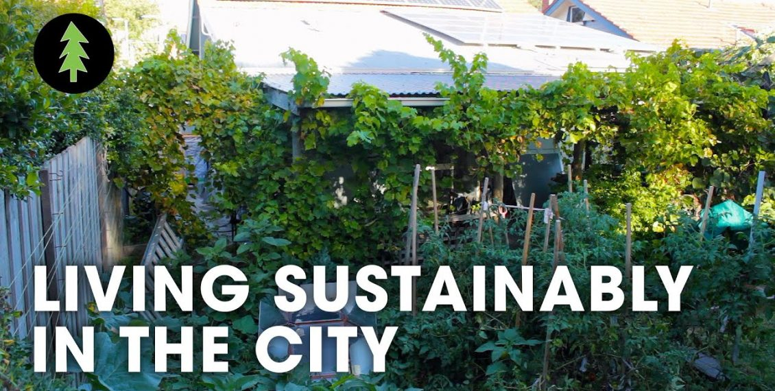 Sustainable City Living On 1/10th Of An Acre...