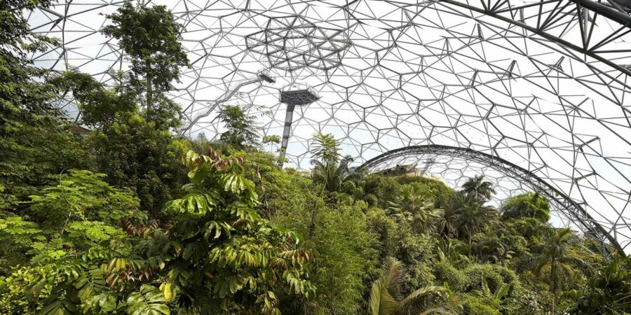 From Barren Landscape To Rainforest Ecosystem Inside A Geodesic Dome...